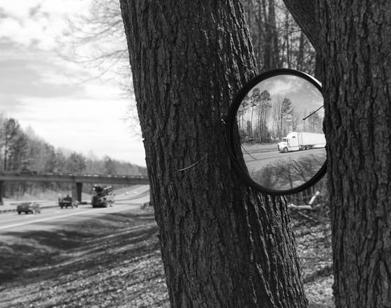 Interstate-Mirror-Tree