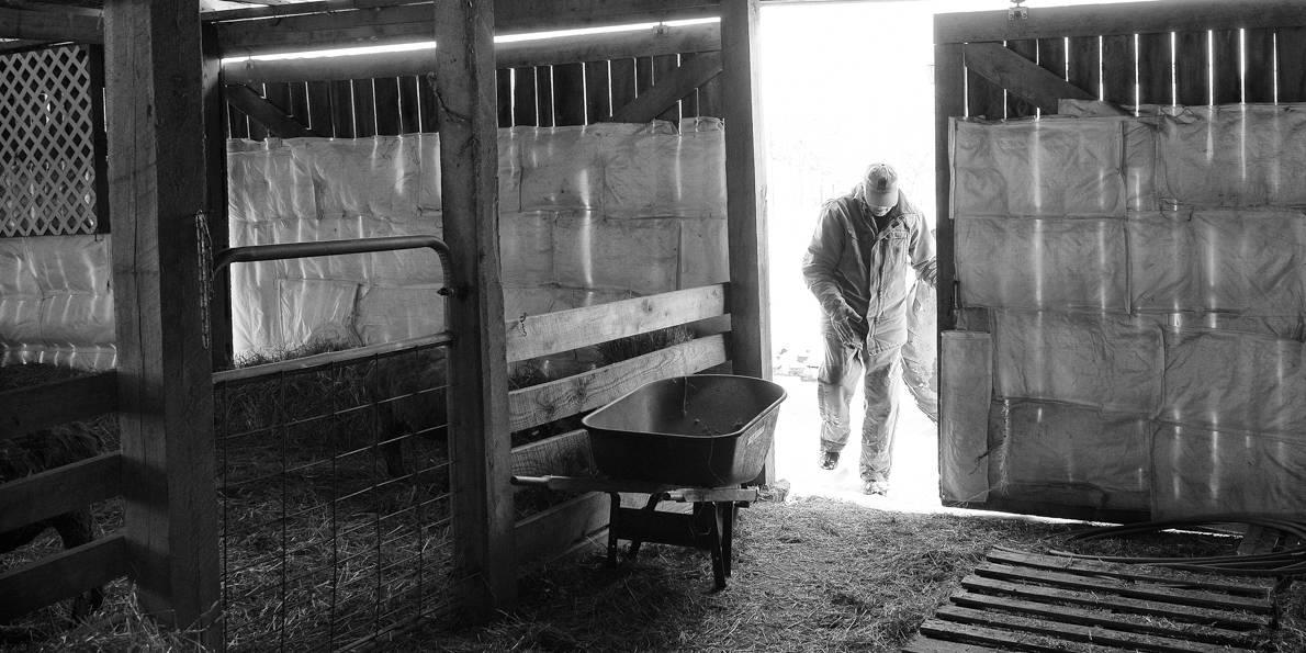 Rising Medow Farm